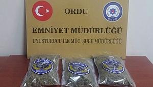 Ordu'da polisten uyuşturucu tacirlerine büyük darbe