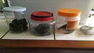 Ordu'da 7 tabanca ve uyuşturucu ele geçirildi