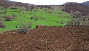 Akkuş'ta Atıl Arazilerde Tarım Başladı