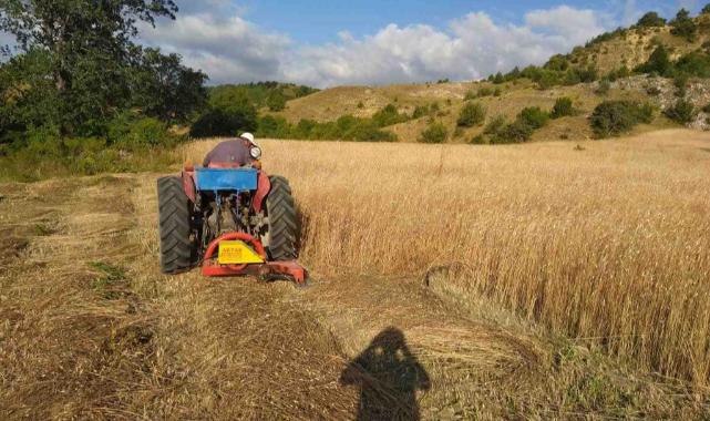 Atıl Arazilerde Üretim Devam Ediyor